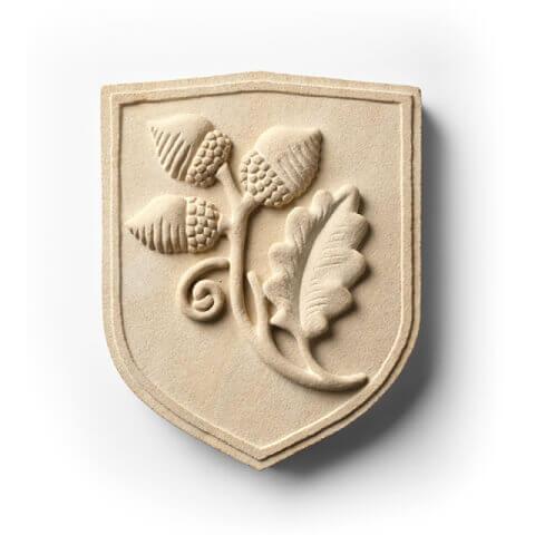 ais academica shield